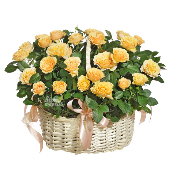 Корзина «Wonderful life»