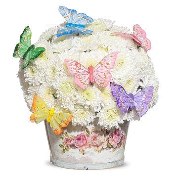 Букет Композиция «Бабочки»